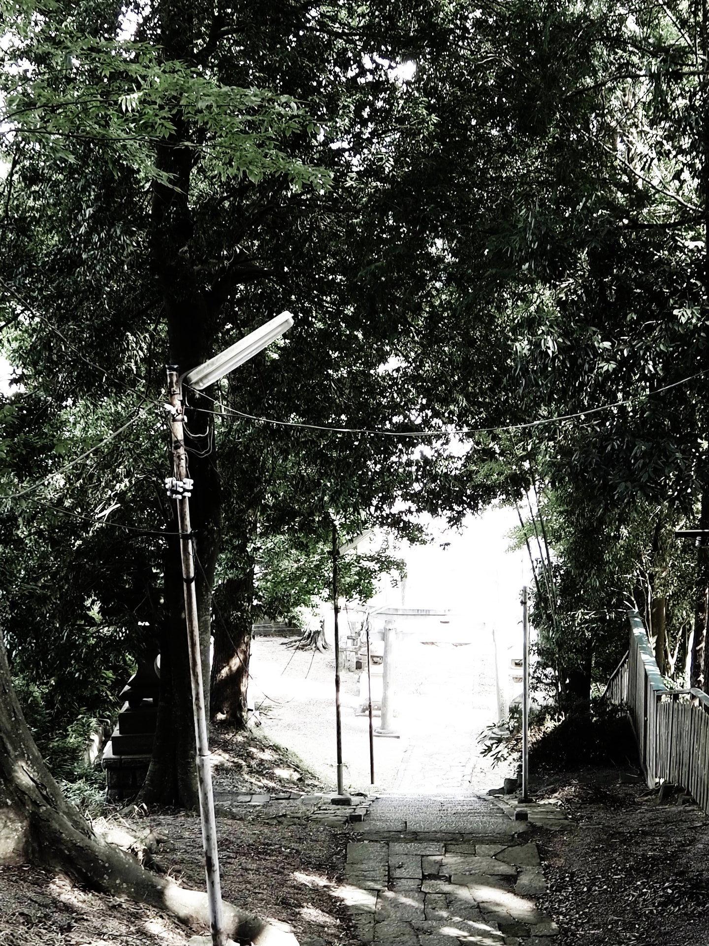 本宮P8100018.JPG