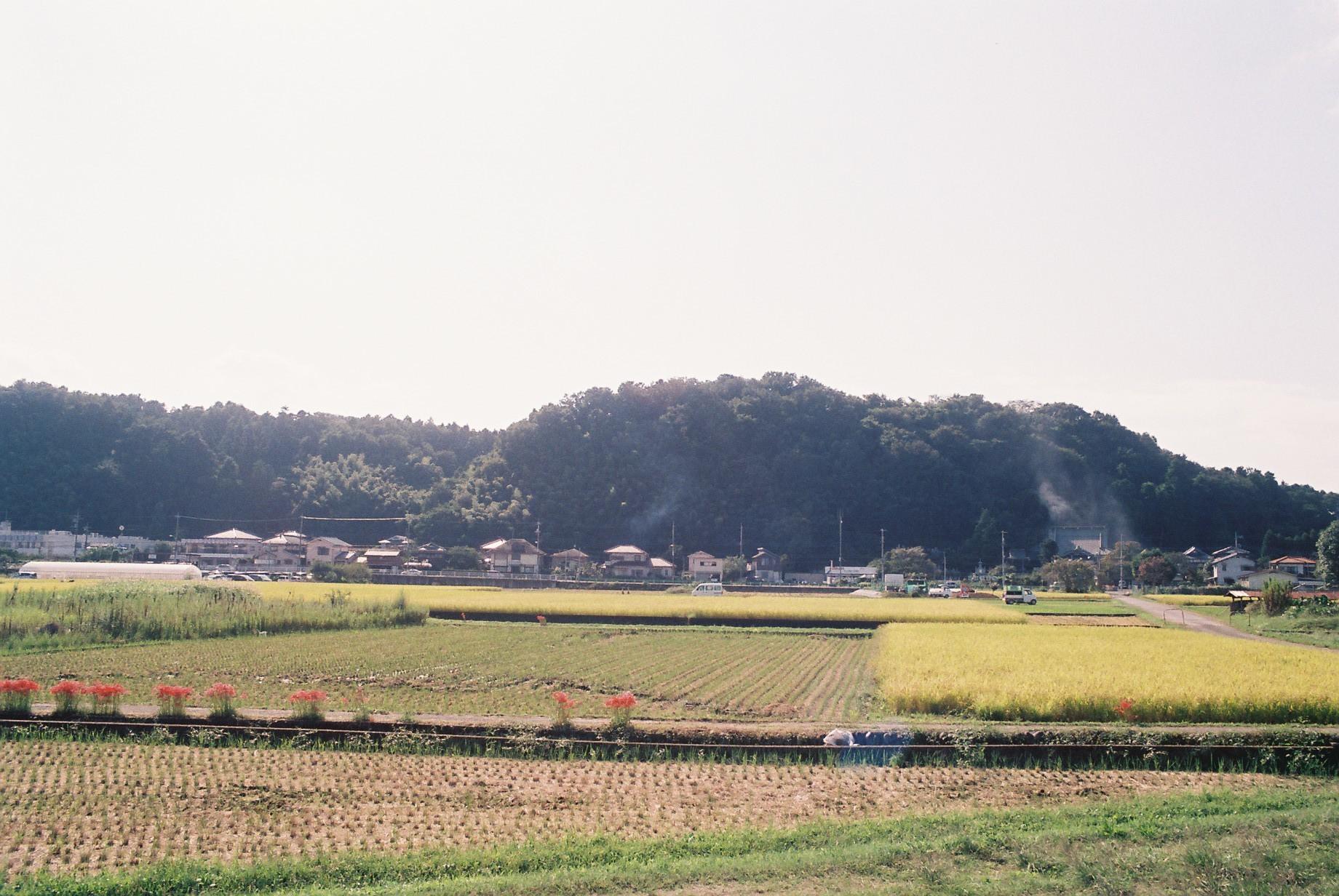 FH010018.JPG